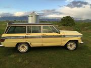 1973 jeep Jeep Wagoneer Custom